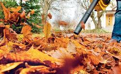 Porządkowanie ogrodu jesienią. Narzędzia do sprzątania ogrodu - przegląd