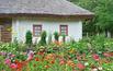Pomysł na aranżację wiejskiego ogrodu