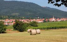 Domy ekologiczne we Francji. Francuzi stawiają na naturalne materiały i prefabrykaty